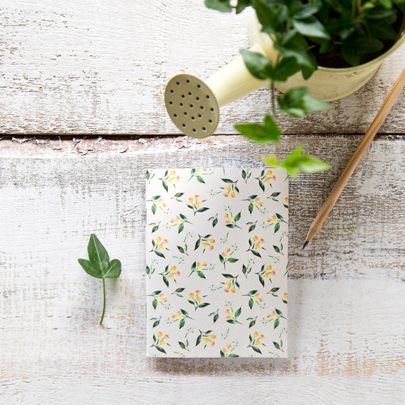 La cajita de papel tr o de libretas el jard n m gico for El jardin magico